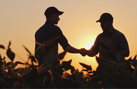 Gestión de personal para trabajos agrícolas
